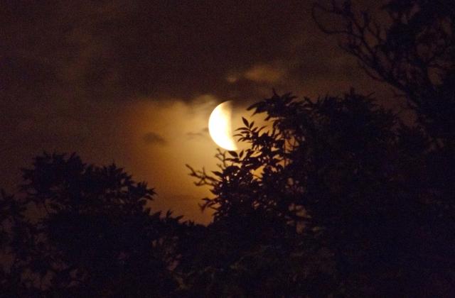 Zdjęcie: Zaćmienie księżyca Autor: Mariusz Łukaszewski
